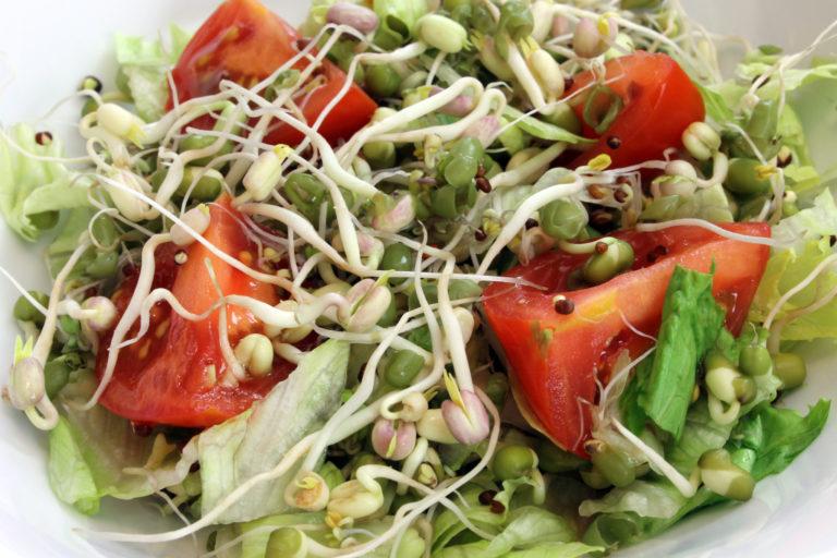 Проростки пшеницы — в чем польза и как использовать в питании