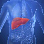 Что мы знаем о «ласковом убийце»: 12 фактов о гепатите