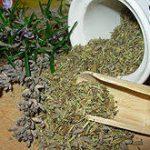 Прованские травы: делаем блюда восхитительными