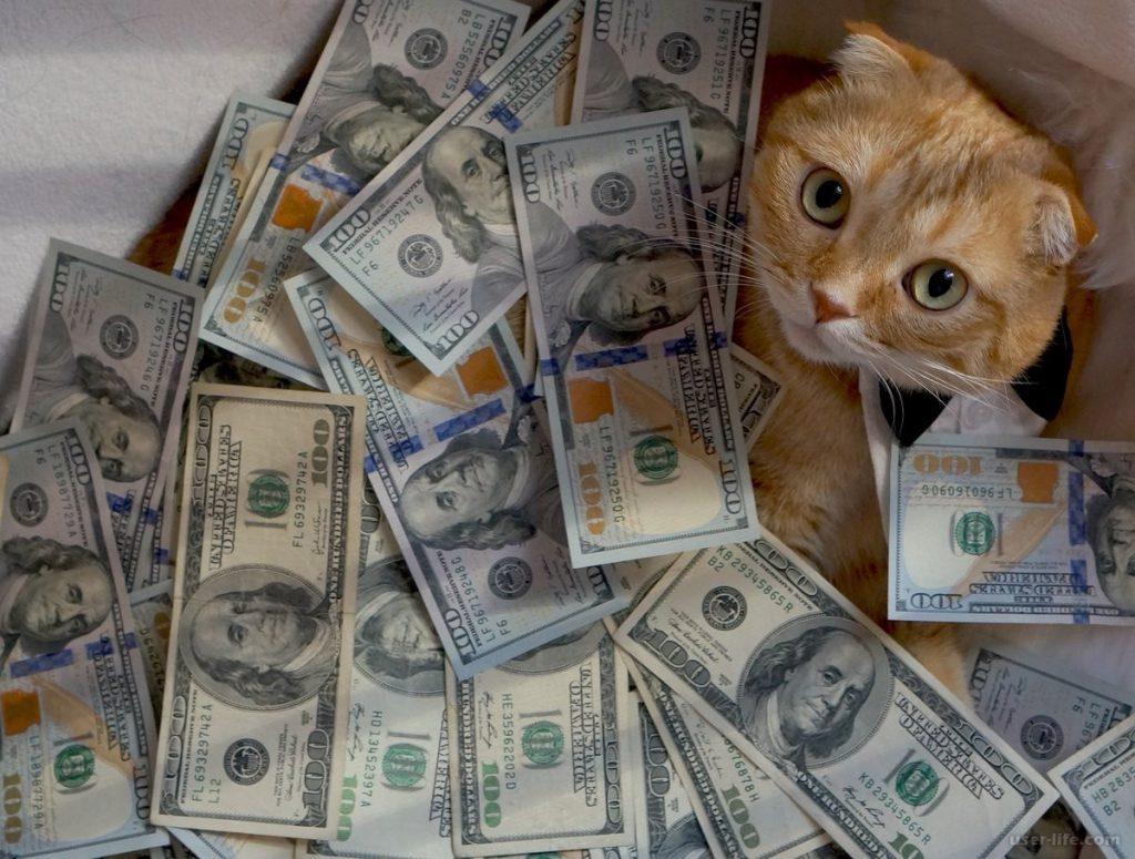 Как заработать кучу денег без вложений в интернете