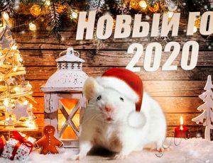 Каким видите Новый год 2020?
