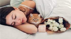 Циркадные биоритмы: как спать и высыпаться